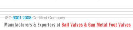 ball valves manufacturers exporters and suppliers in India Punjab Ludhiana